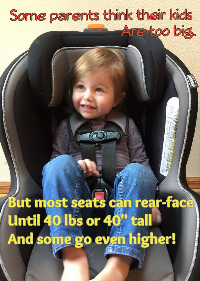 Car Seat For Child Over 40 Lbs Coco Central
